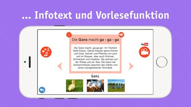 fzk-tiere-apple-store-iphone-2