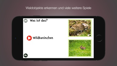 fzk-wald-apple-store-iphone-4
