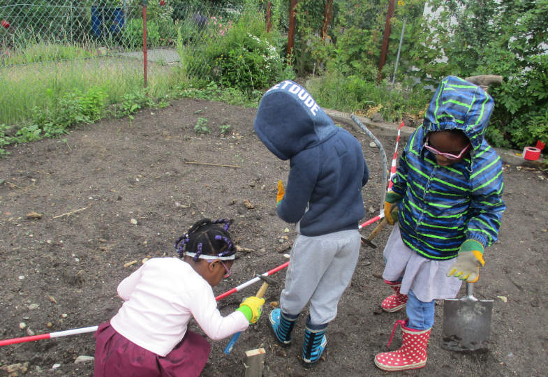 Unser großer Kleingarten