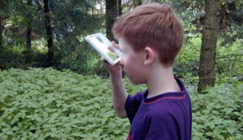 Frosch- und Vogelperspektive: Aus Tiersicht: Spiegelblicke 4