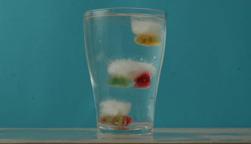 Gummibärchen im Eiswürfel: Tauchende Eisbären 2