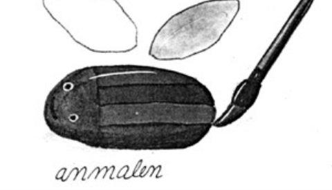 Kleine Krabbler aus Steinen : Käferrennen