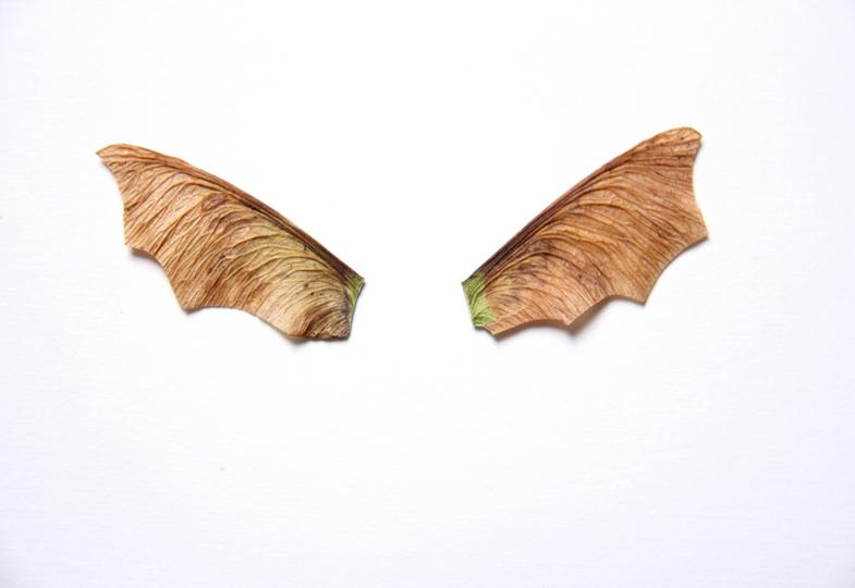 Vorsichtig Bögen wie bei einem Fledermausflügel einschneiden.