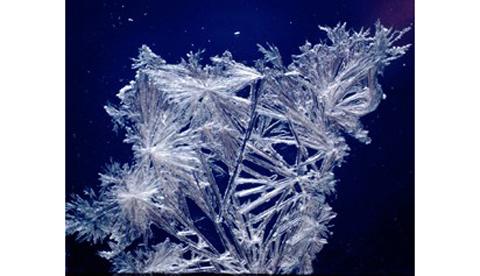 Salzkristalle züchten: Eisblumen am Fenster