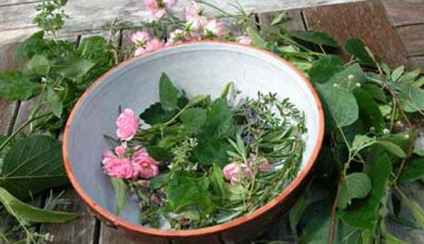 Werkeln mit Kräutern und Blüten: Erfrischungsbad und Eistee 3