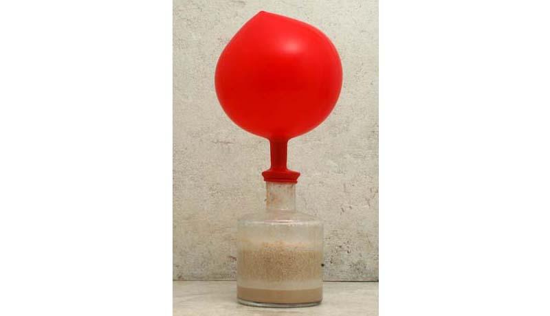 Zauberhafter Luftballon: Experiment mit Hefe 4