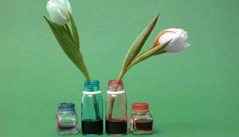 Zaubern mit Tinte: Blaue Tulpen 1