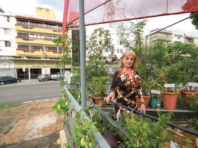 """""""Eine Oase inmitten des städtischen Wahnsinns"""" nennt Sandra Fayad ihren Garten in der Metropole Brasilia."""