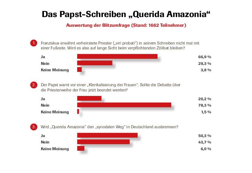 Auswertung der CIG-Redaktionsumfrage zum Papst-Schreiben zur Amazonas-Synode