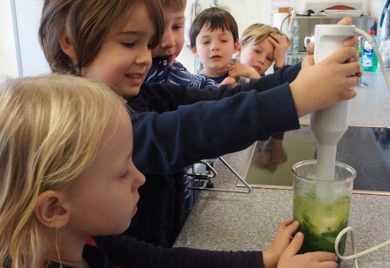 Abgekocht oder roh püriert – welche Spinatflüssigkeit zeigt intensivere Farben?