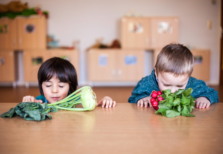 Die Kinder erschnuppern, wie unterschiedlich Radieschen und Kohlrabi riechen