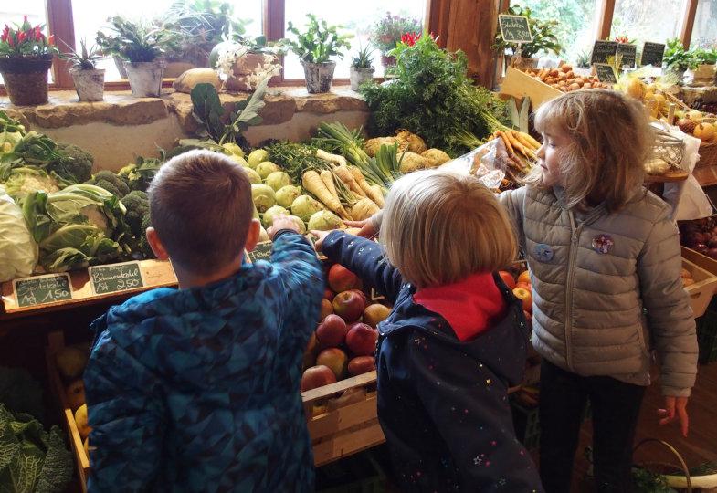 Blumenkohl, Kohlrabi, Pastinaken: In einem Hofladen erkunden die Kinder saisonales Gemüse
