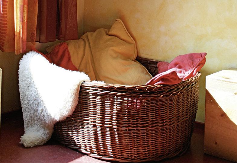 Ruhige Räume - Nischen und Ecken zum Ruhen gestalten