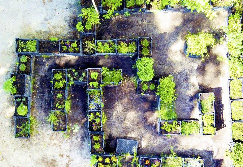 Vom Bolzplatz zum Pflanzenlabyrinth