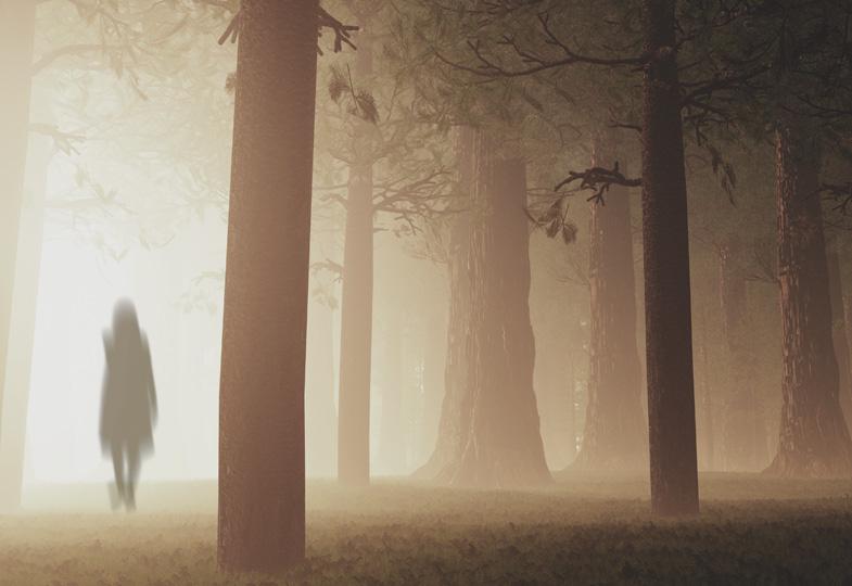 Der Nebel: Heilende Gegenwart