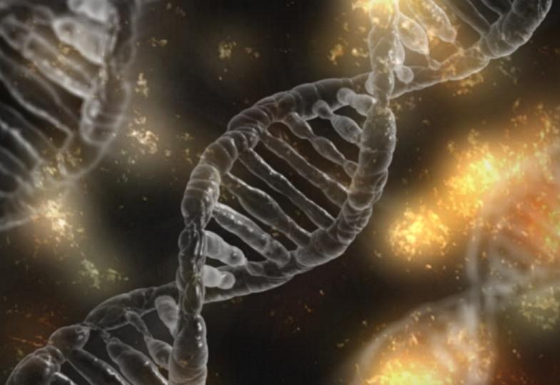 Blick auf vergrößerte DNA-Doppelhelix