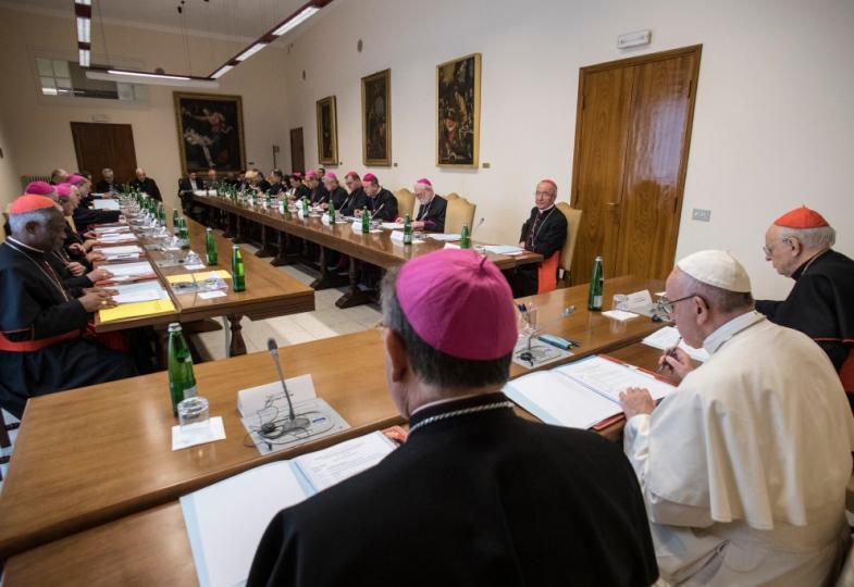 Bischöfe bereiten mit Papst Franziskus die Amazoniensynode vor.