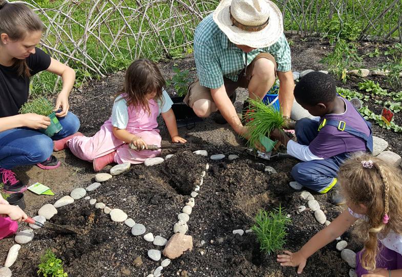 Kooperieren mit der Urban-Gardening- Gruppe Rheinfelden