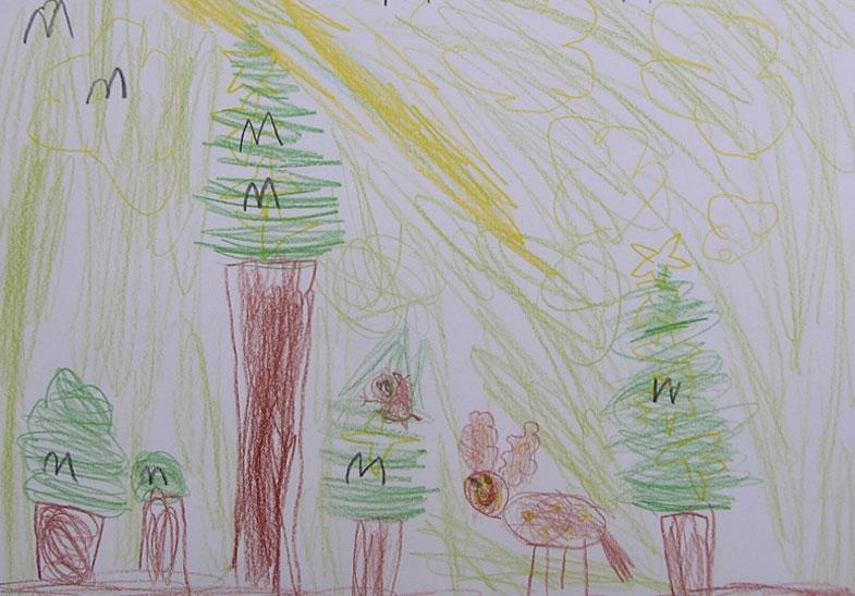 Waldtage rechtssicher planen