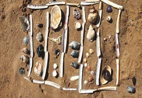 Sammlerglück: mit Muscheln und Schnecken lassen sich schöne Bilder in den Sand legen