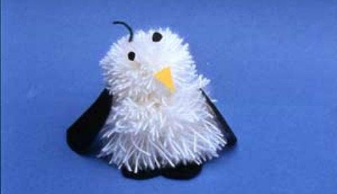 Besuch vom Südpol: Pompon-Pinguin