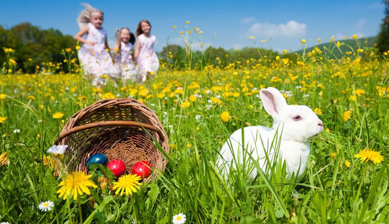Die Wahrheit über Ostern:
