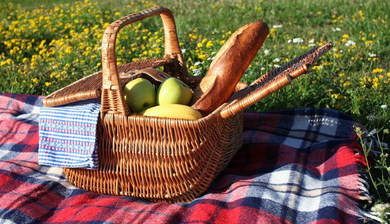 Genießen unter freiem Himmel: Wir sind die Picknicker!