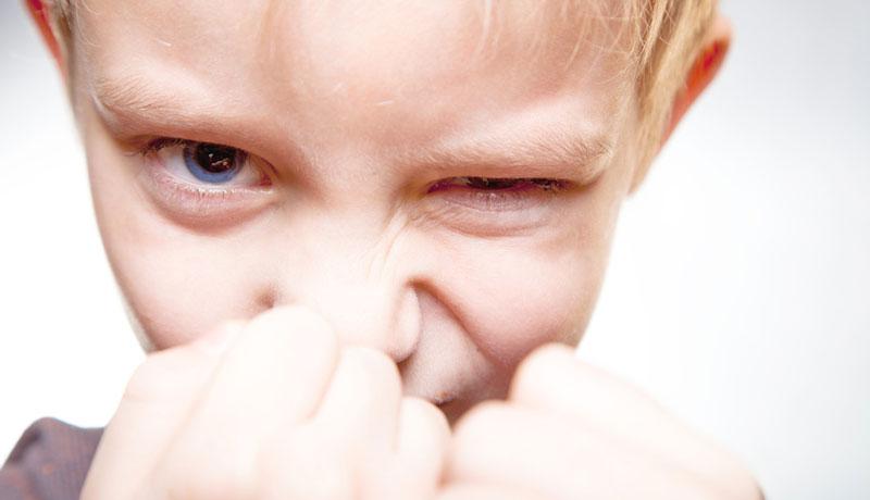 Gewalt im Kindergarten: Was tun bei Raufereien?