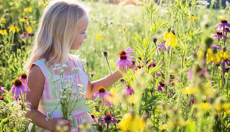 Homöopathie bei Allergie: Allerlei gegen Allergie