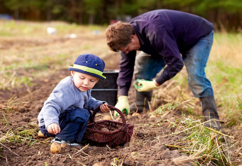 Anbauen, ernten, zubereiten: Slow-Food bedeutet, das Essen nicht erst auf dem Teller zu erleben