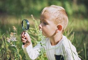 Warum ist die Blume braun? Kinder sind von Natur aus wissbegierig