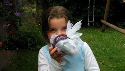 Werkeln mit Kräutern und Blüten: Erfrischungsbad und Eistee