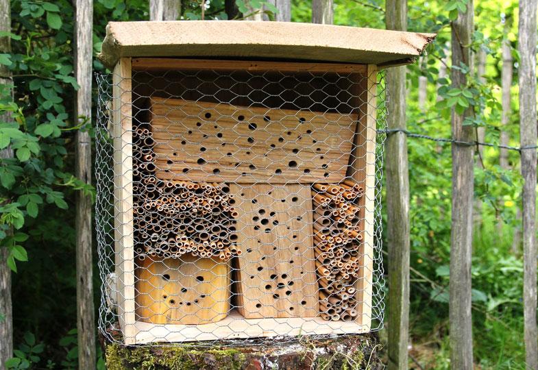 Der Bau eines Wildbienenhotels ist ein schönes Bastelprojekt für die ganze Familie.